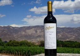 Tinto calchaquí: Cómo es y cuánto cuesta el vino argentino que está entre los 5 mejores del mundo