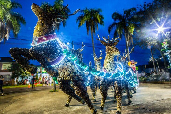 La Fiesta de la Navidad se encendió en Capioví