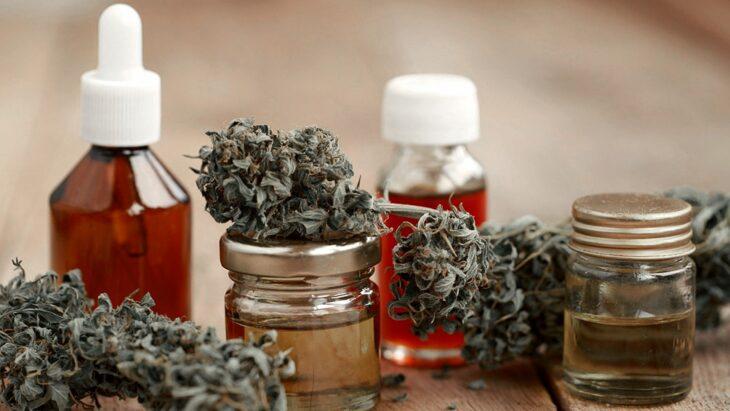 Habilitan la inscripción y el registro de cultivadores de cannabis con fines medicinales de manera oficial