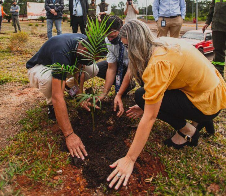 CONSERVACIÓN: sembraron más de un centenar de especies autóctonas en el Aeropuerto de Iguazú