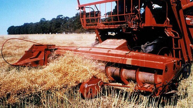 El Gobierno enviará al Congreso un proyecto con incentivos para la agroindustria