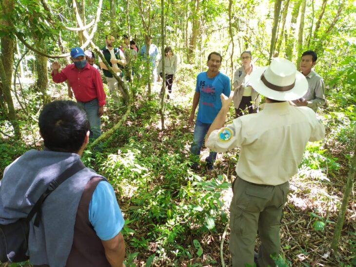 Volver a la Selva: Se concretó la primera incursión al futuro Sendero Guaraní en el área Cataratas